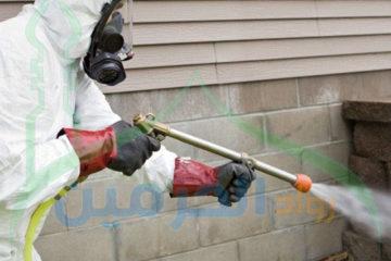 ارخص شركة مكافحة النمل الابيض بالرياض